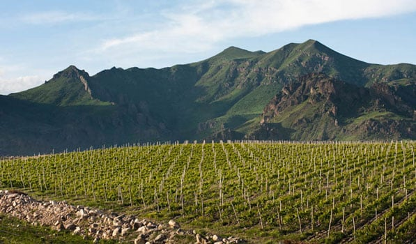 Archaeologists discovered world's earliest winery in Armenia, dating back to circa 3,000 to 3,500 BC. 1