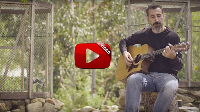 Serj Tankian - Artsakh (Music Video)