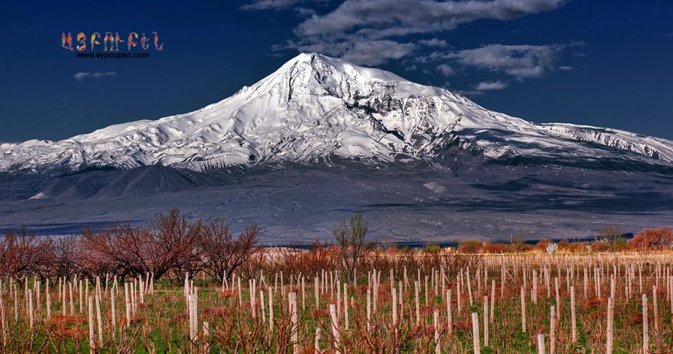 Mount ararat view from armenian vineyard